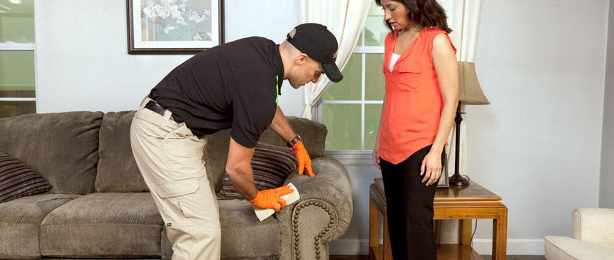 Billerica, MA carpet upholstery cleaning